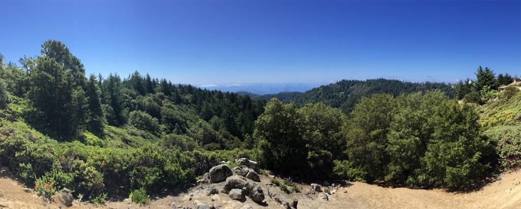 12380 Indian Rock Way Los Gatos CA